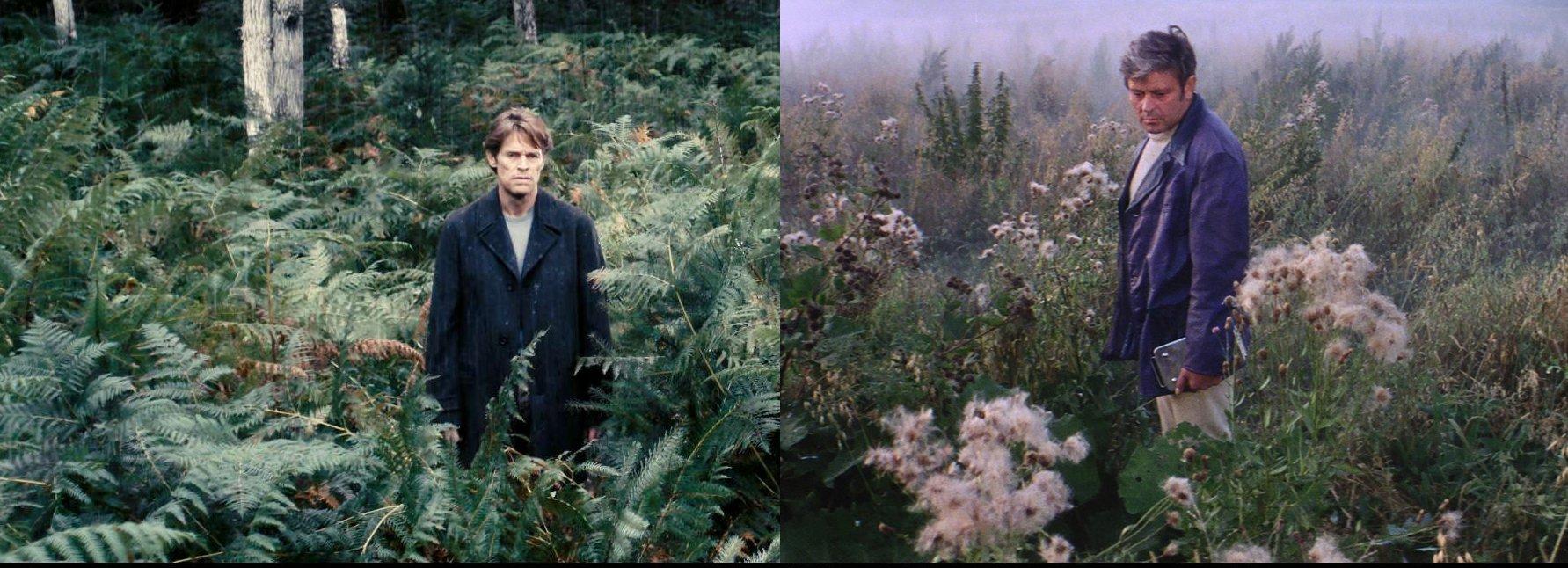 Andrei Tarkovsky and Lars Von Trier