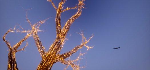 A glowing tree as featured in the VR artwork Bayi Gardiya - courtesy of Nakatomi
