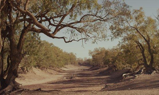 Barka-Darling river, Barkandji country - Darling Darling