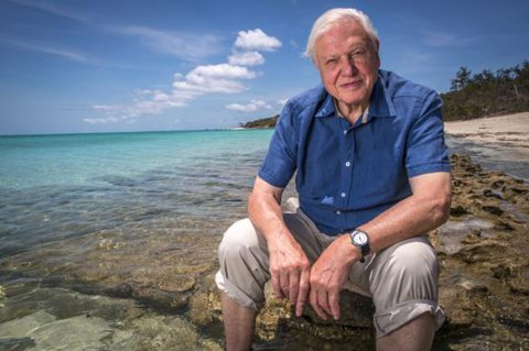 David Attenborough Great Barrier Reef
