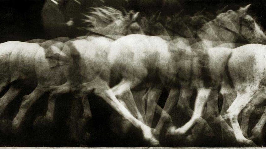 Étienne-Jules Marey, Cheval blanc monté, 1886, locomotion du cheval, expérience 4, Chronophotographie sur plaque fixe, négatif