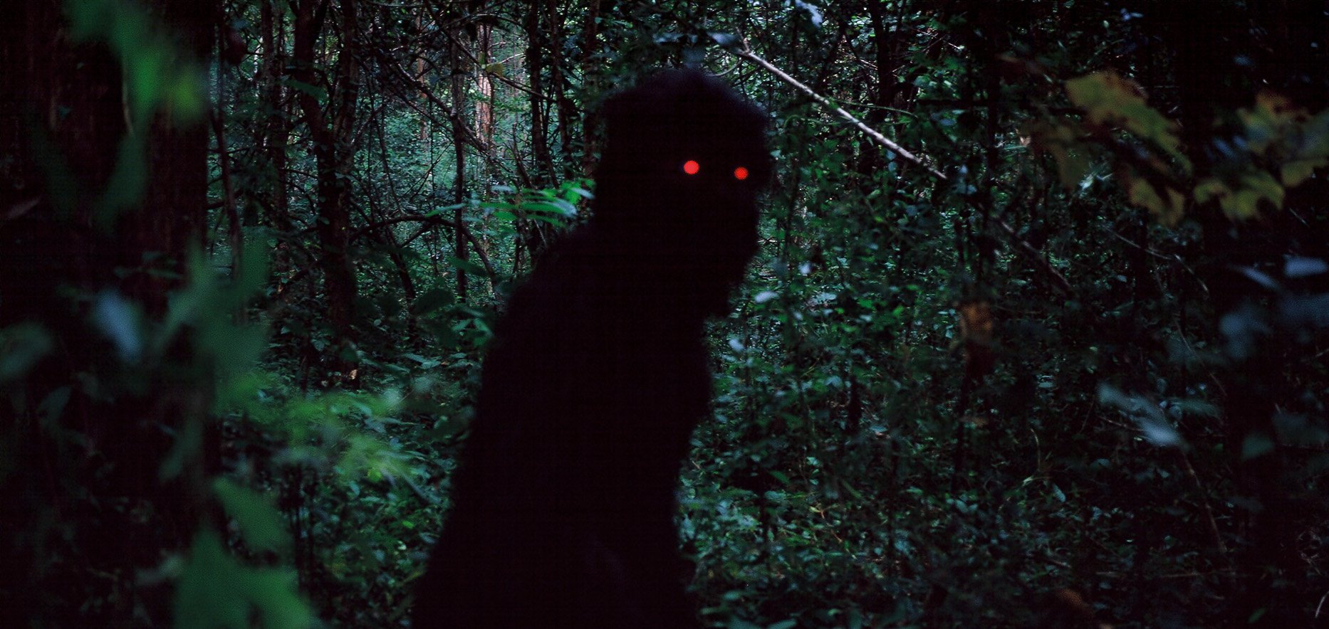Still from Uncle Boonmee Who Can Recall His Past Lives (2010) -  silhouette in forest with red eyes