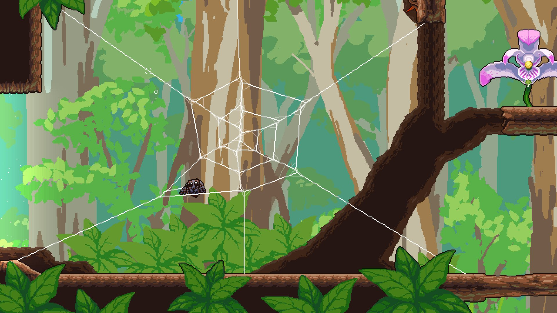 Peacock spider sitting in a web - screenshot from 'Webbed' (2021) Sbug Games