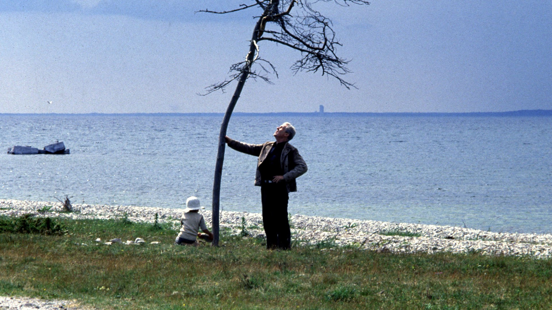 What to watch next after Tarkovsky